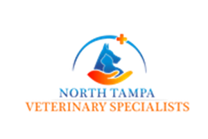 North Tampa Veterinary Specialists
