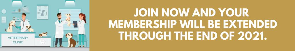Membership Web Banner